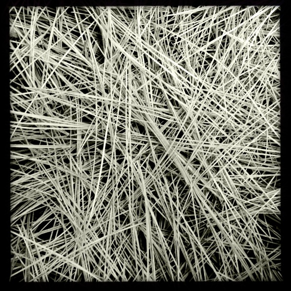 Wind begins / unneeded needles / fall to ground. Haikumages