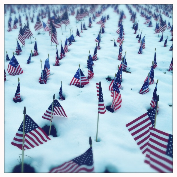 Veterans / day is not enough / to thank them.  Haiku