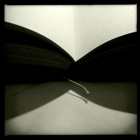 All our soul stories / empty pages printed in / invisible ink.  Haikumages