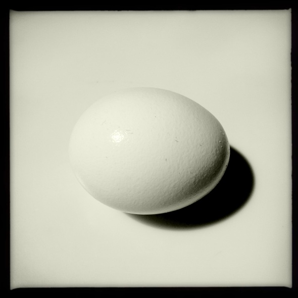 Which came first? / Chicken, egg, or catch / twenty-two? Haikumages