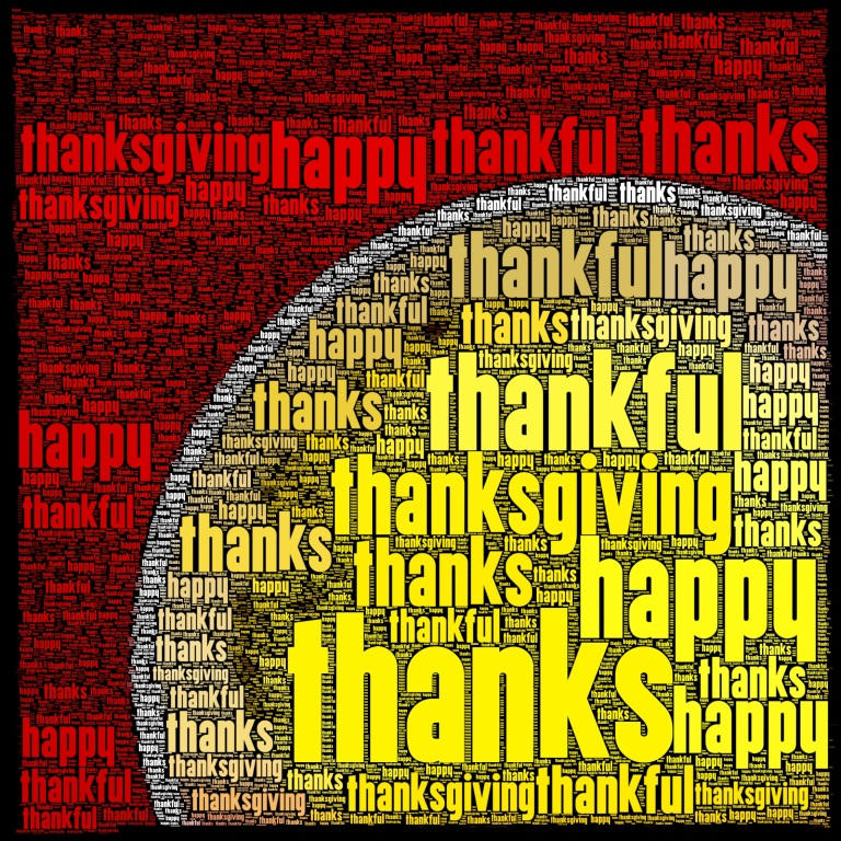 So thankful / I can choose what I'm / thankful for. // micropoetry - haiku - haikumages