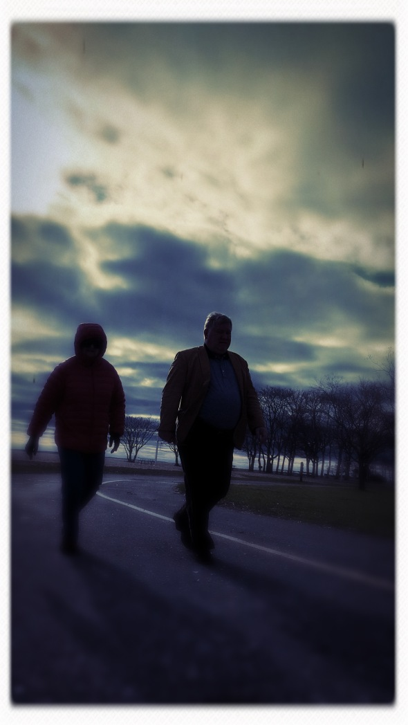 Friendship's potential / stolen from me and others / by the thief of days. // haiku - micropoetry - haikumages