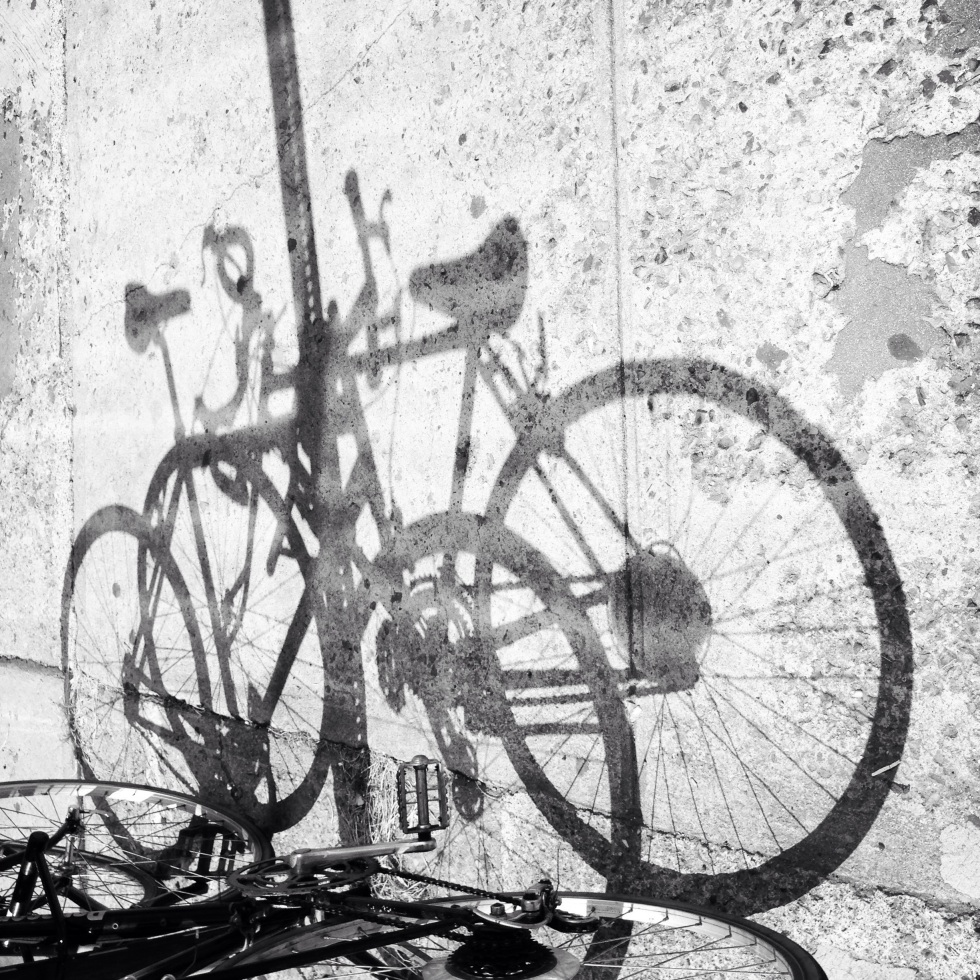 Bicycles / two of them may cast / one shadow. // haiku - micropoetry - haikumages