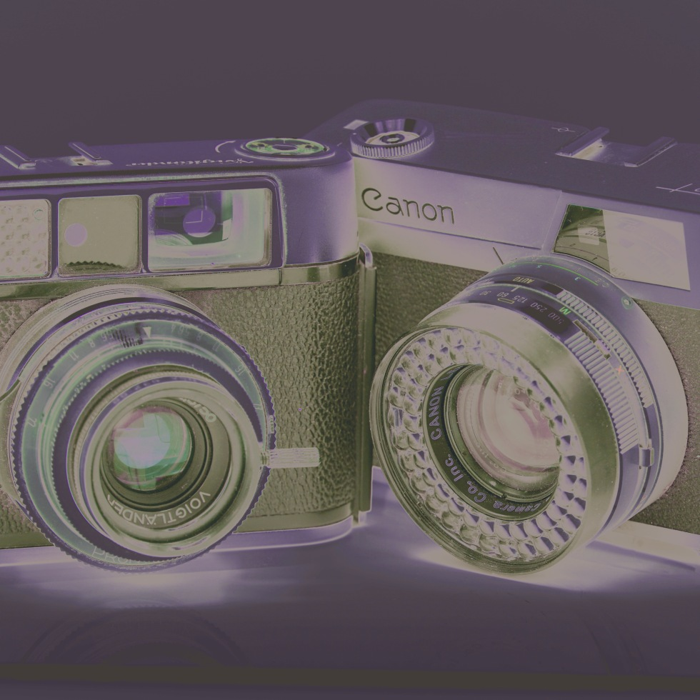 Two old cameras / lovingly manufactured / the same year I was. // micropoetry - haiku - haikumages