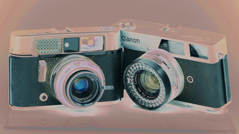 Two old cameras / lovingly manufactured / the same year I was. // haiku - micropoetry - haikumages